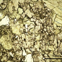 Marble-thin section plane polarized light